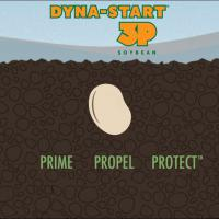 Dyna-Start 3P: The faster the start, the stronger the finish.