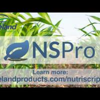 NSPro Commercial (0:43)